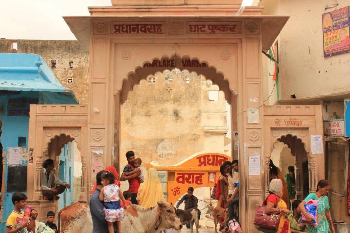 Soladel - Pushkar - Scarletpost La culture des idées